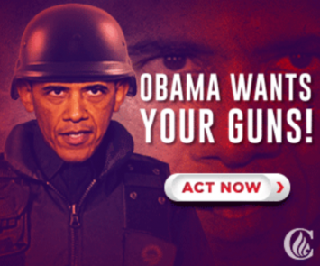 """Obama wants your guns!"""